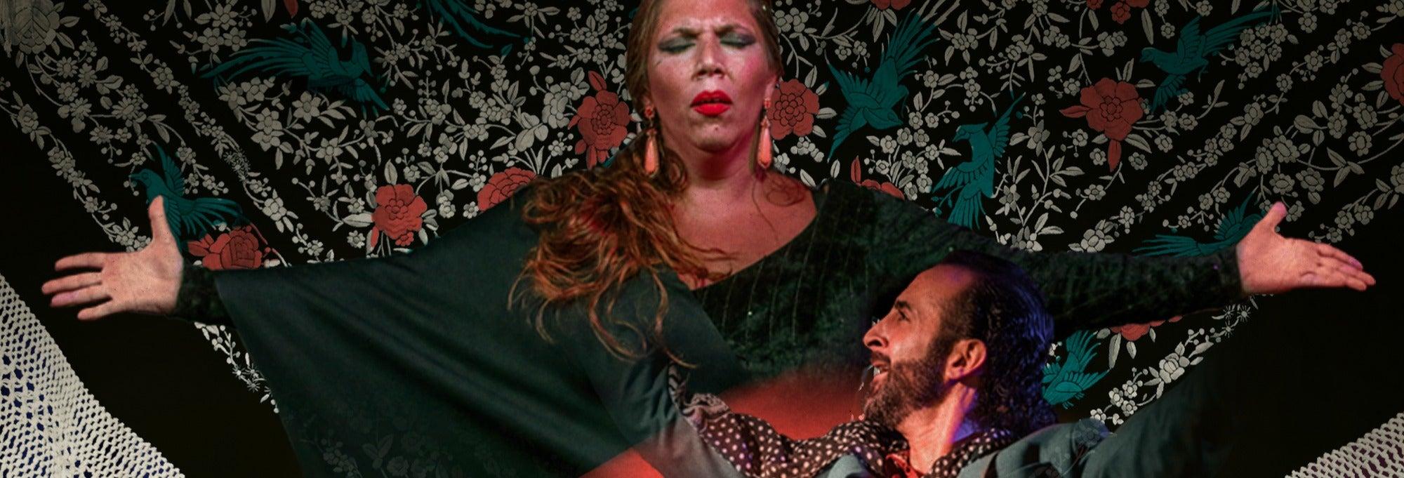 Espectáculo en el Tablao Flamenco Alegría