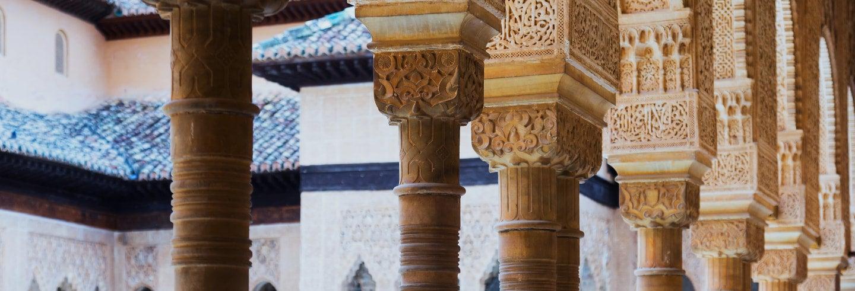 Escursione all'Alhambra di Granada