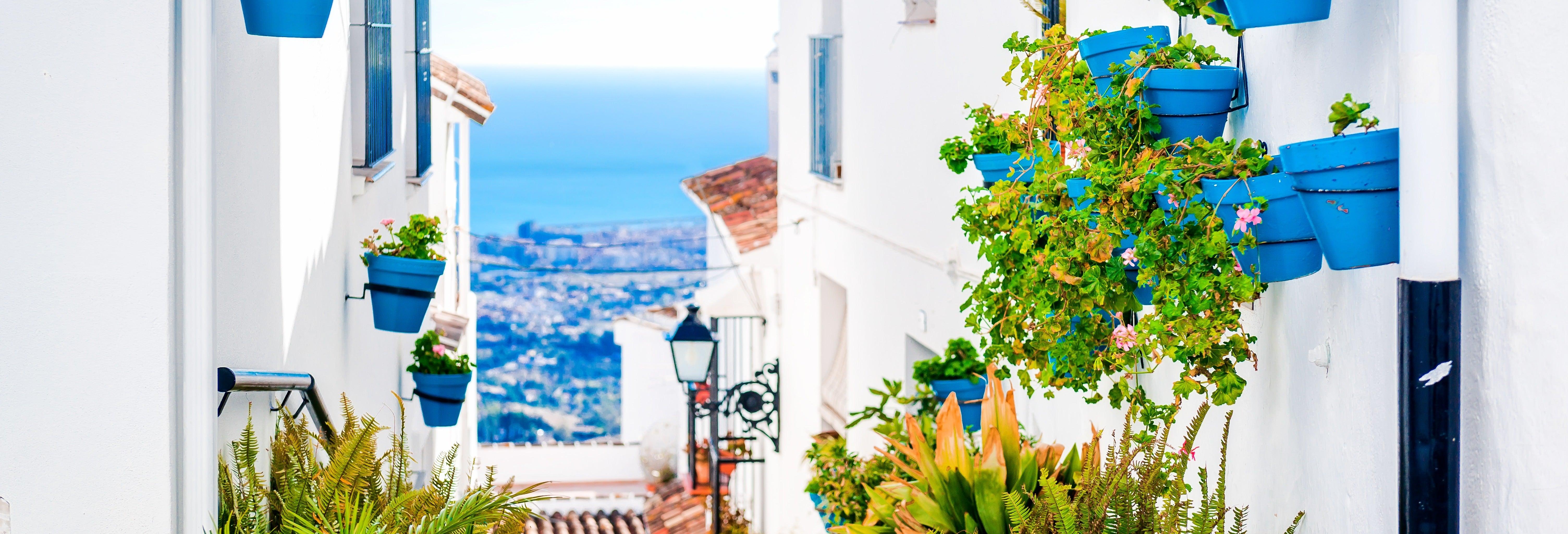 Escursione a Marbella e Mijas