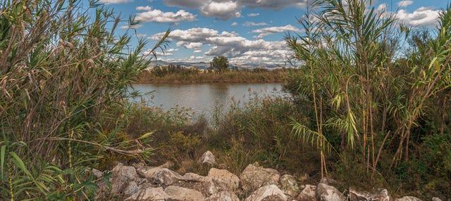 Senderismo por la desembocadura del río Guadalhorce