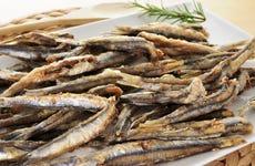 Tour gastronómico por Málaga