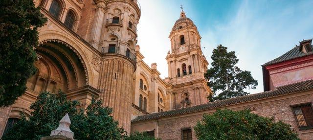Visita guiada por la catedral y alrededores