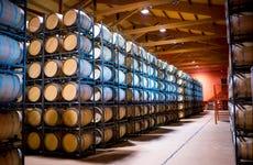Visita a la Bodega Emina Rueda