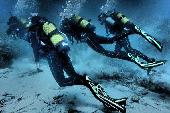 During one of the dives