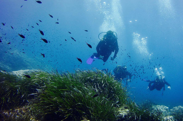 Swimming amongst fish and seagrass in Menorca