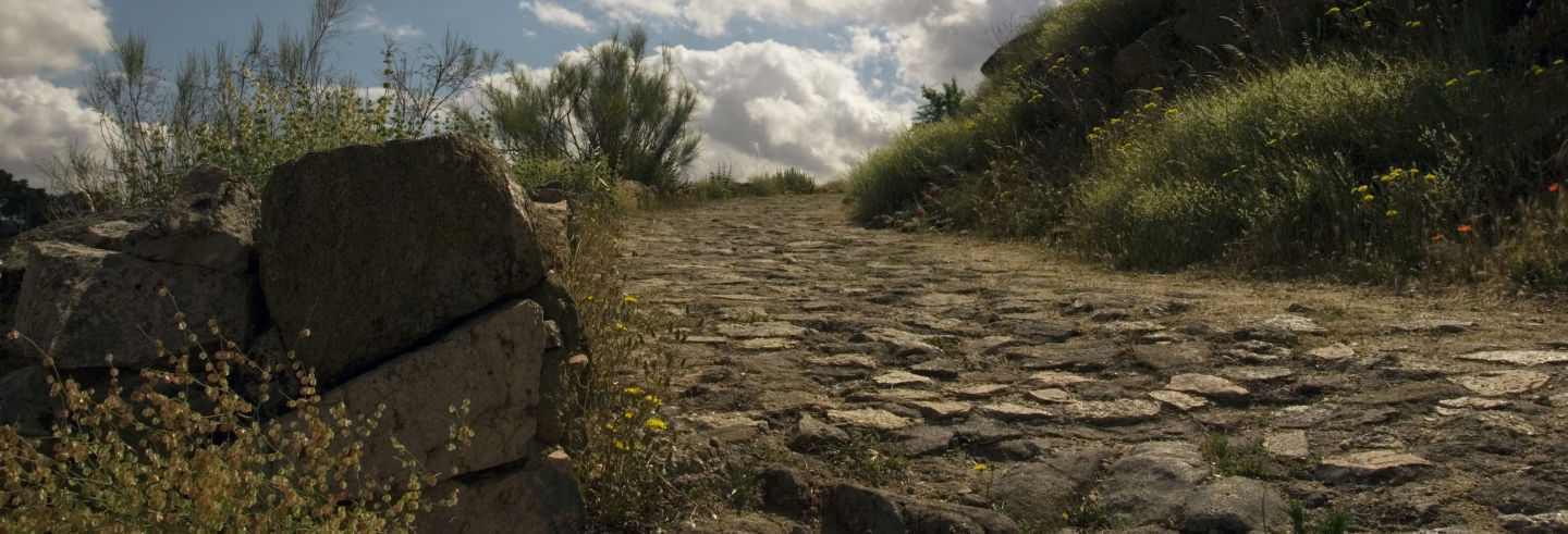 Tour por la Ruta Bética Romana