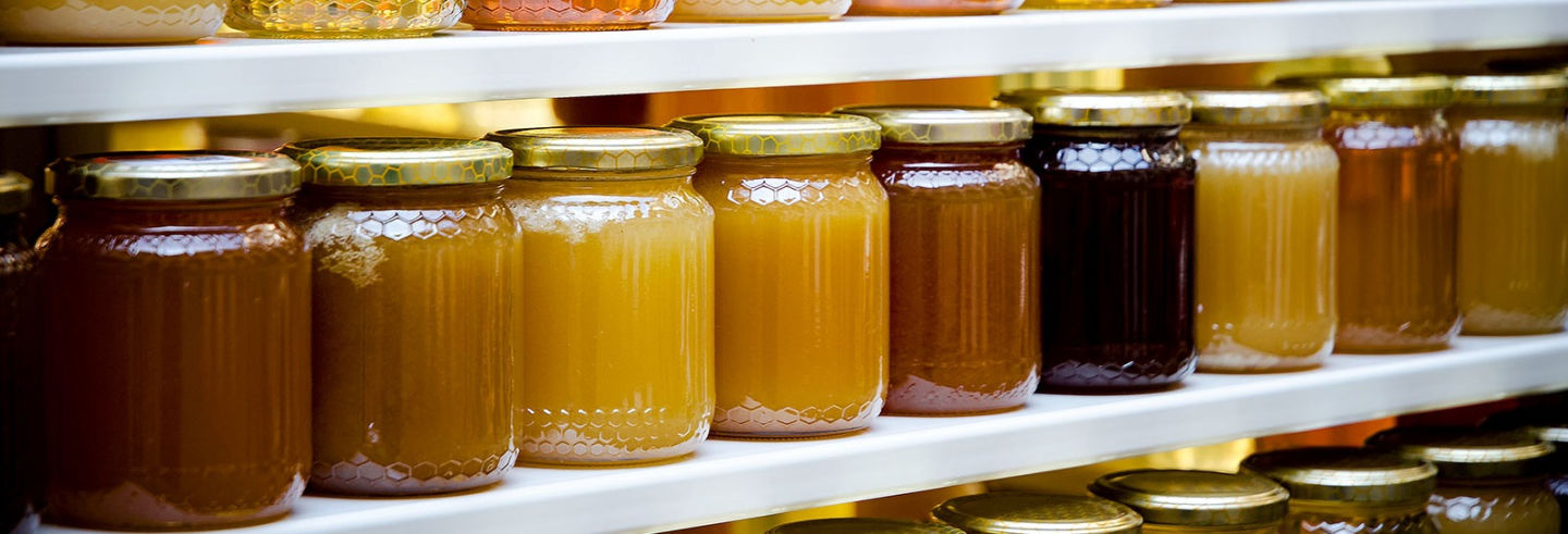 Visita a una bodega de miel