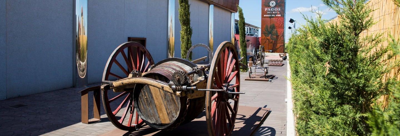 Visita guiada por el Museo del Vino Pagos Rey