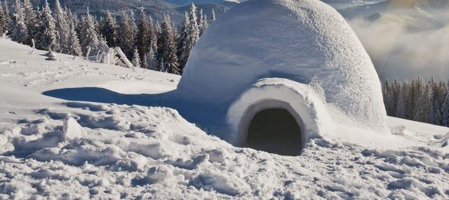 Paseo con raquetas de nieve + Construcción de un iglú