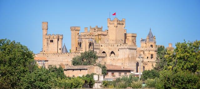 Tour privado por Olite y su castillo