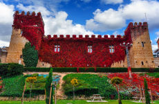 Visita guiada por Olite y su castillo