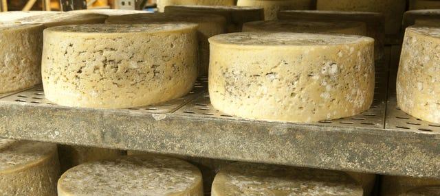 Tour del queso de Cabrales