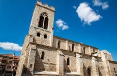 Tour privado por Palencia ¡Tú eliges!