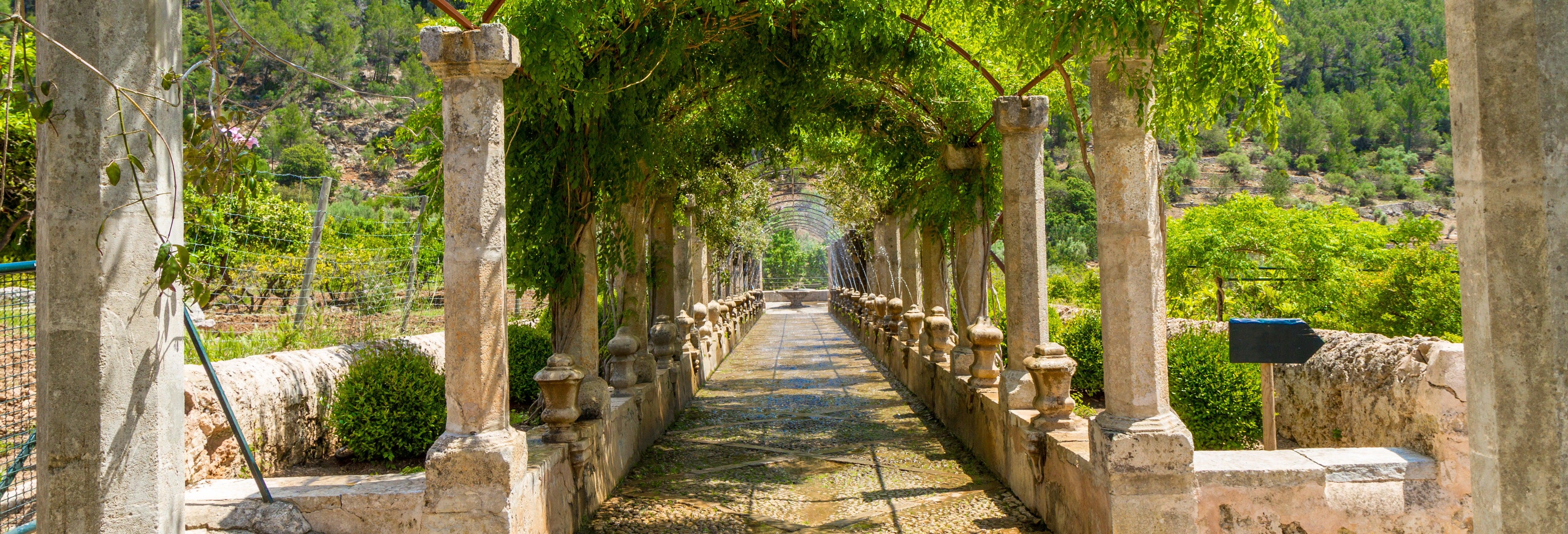 Excursión a los Jardines de Alfabia desde Palma