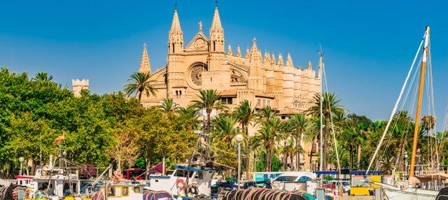 Tour por Palma y su catedral + Valldemossa