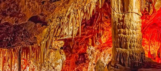 Genova Caves Ticket