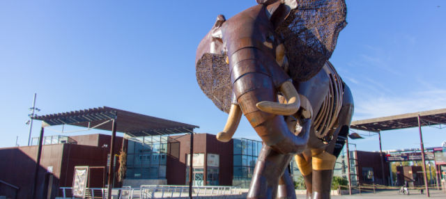 Excursión a Valencia + Bioparc