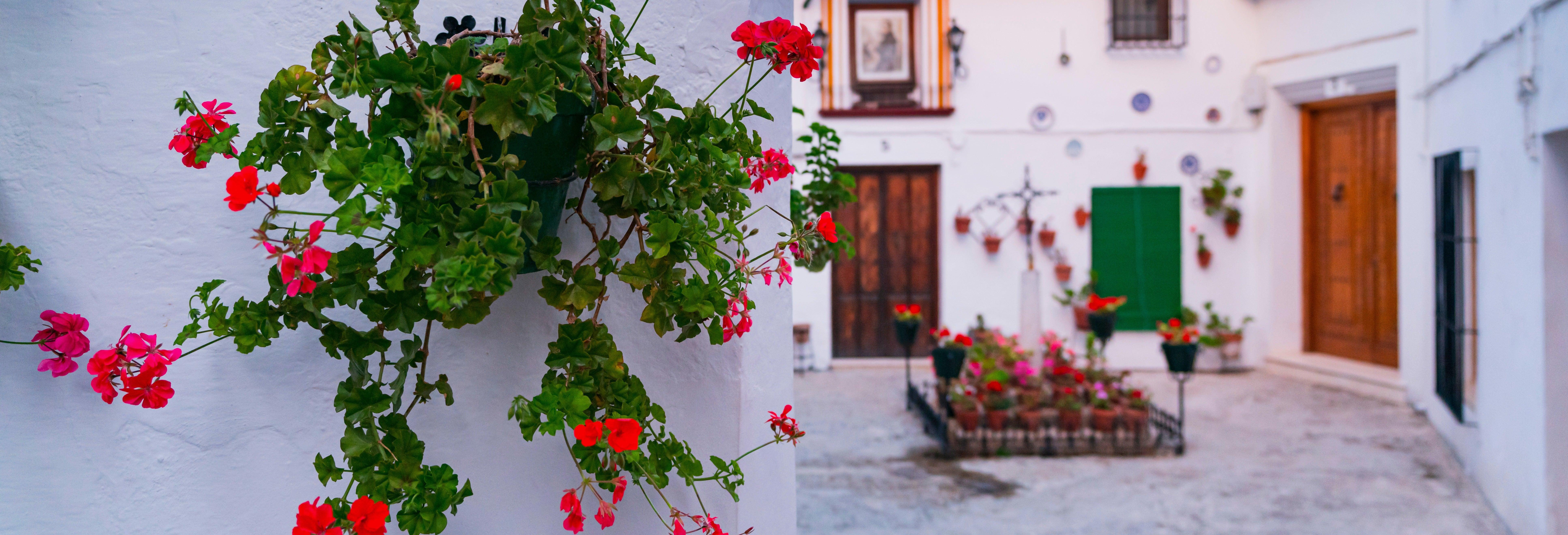Visita guiada por Priego de Córdoba