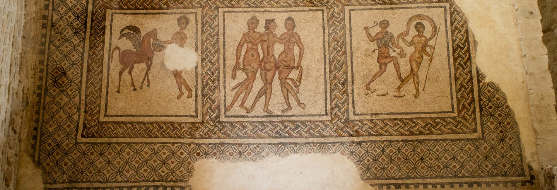 Tour por la Villa romana de Fuente Álamo