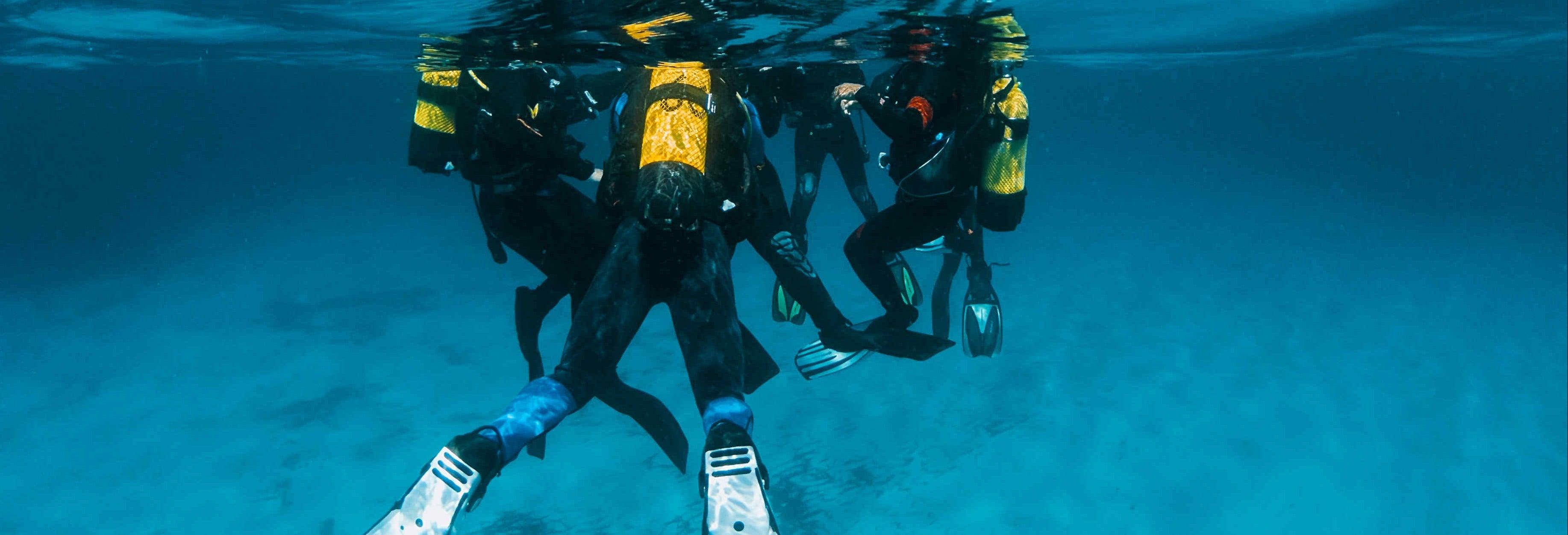 Curso de mergulho PADI Open Water em Port d'Addaia