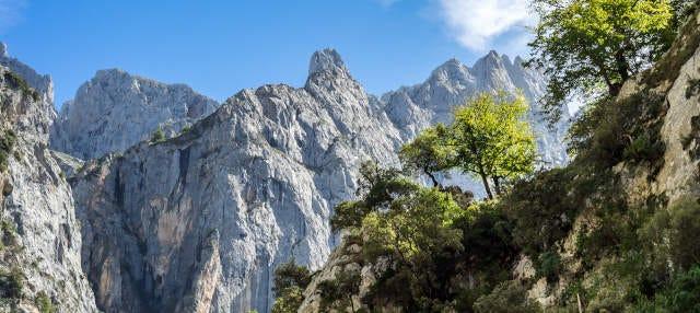 Senderismo por los Picos de Europa