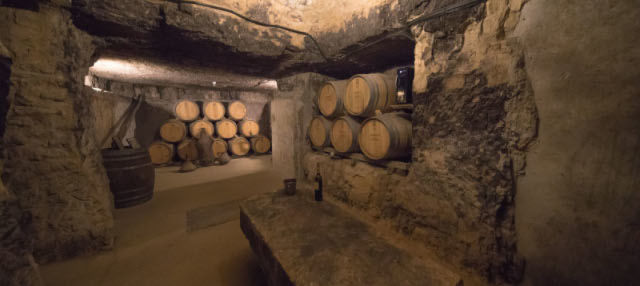 Bodegas Lecea Winery Tour