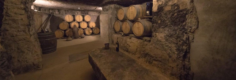 Bodegas Lecea Winery Tour