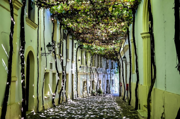 A street in Jerez Cathedral