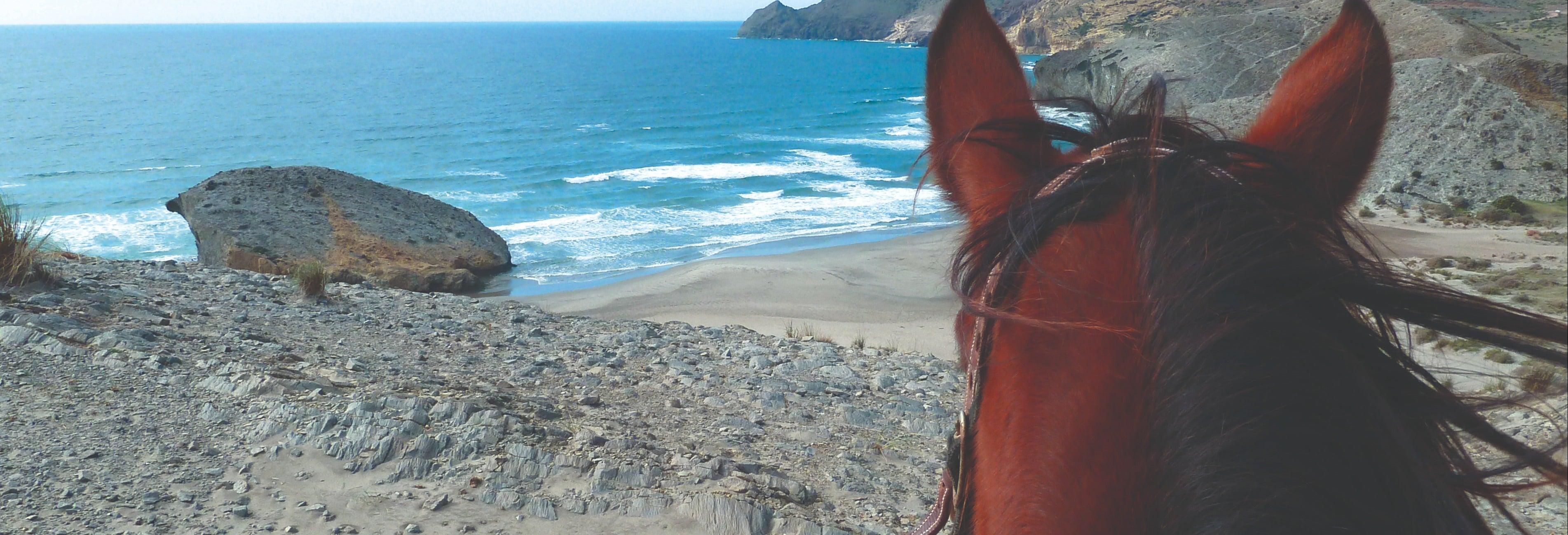 Passeio a cavalo por Cabo de Gata