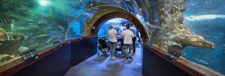 Entrada al Aquarium de San Sebastián