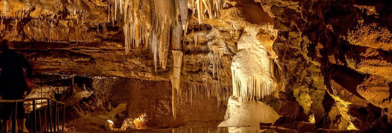 Visita guiada por la Cueva El Soplao