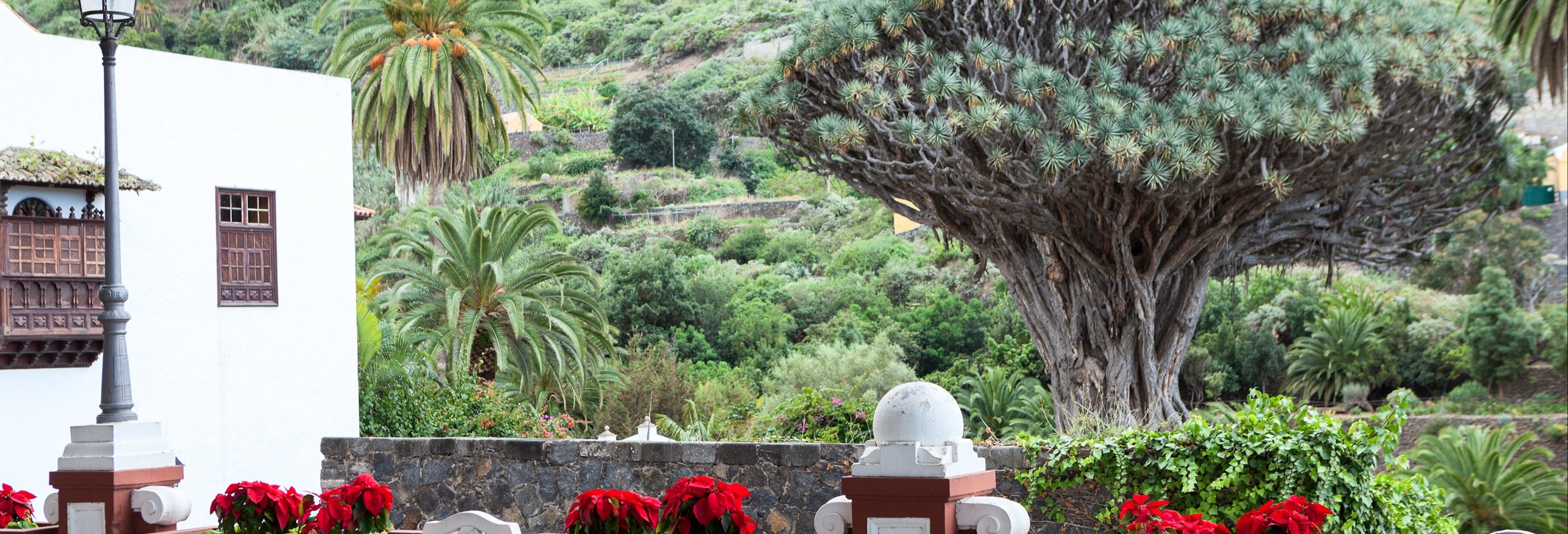 Excursión privada por Tenerife