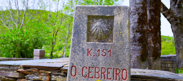 Tour por el Camino de Santiago francés
