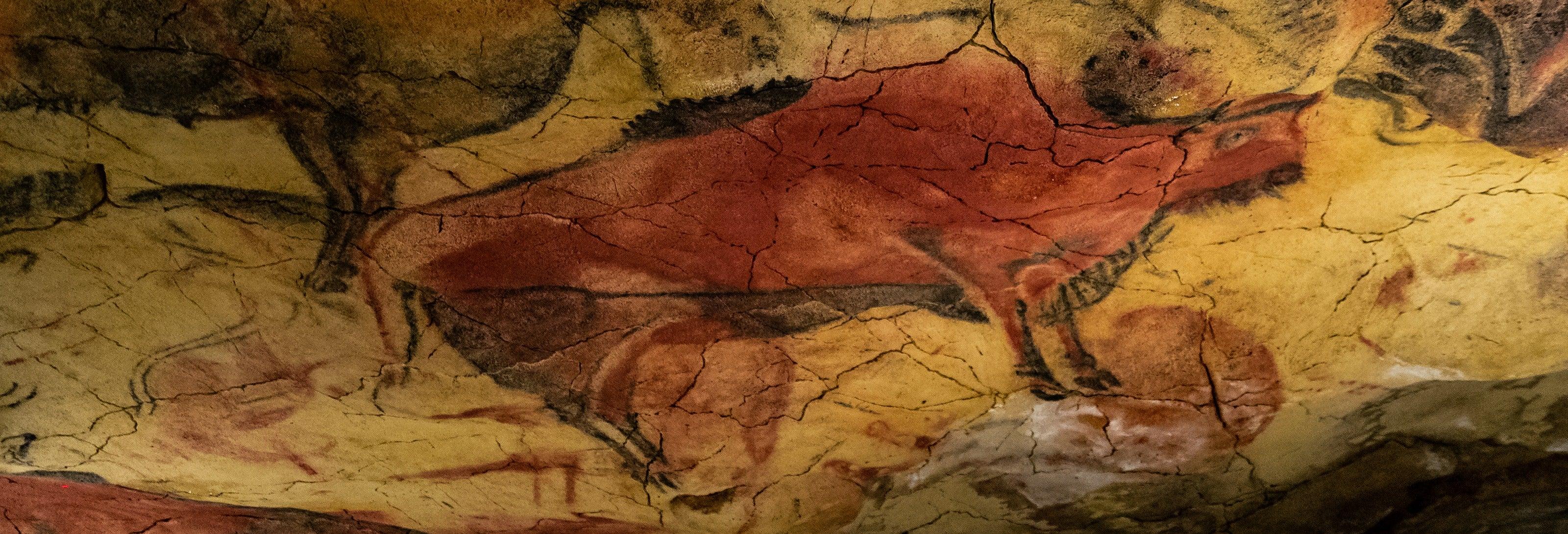 Visita guiada por la Neocueva y Museo de Altamira
