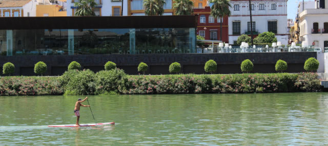 Alquiler de paddle surf en Sevilla