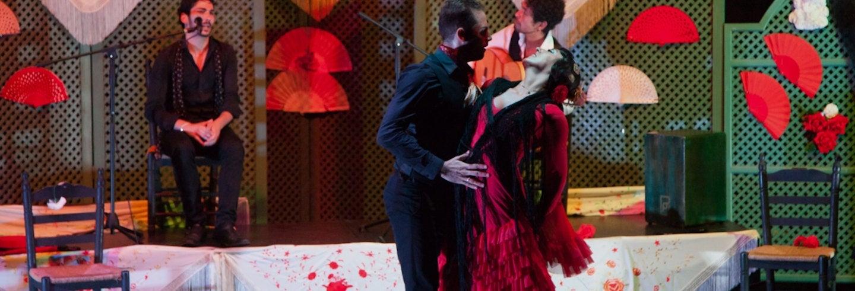 Espectáculo en el tablao Cuna del Flamenco
