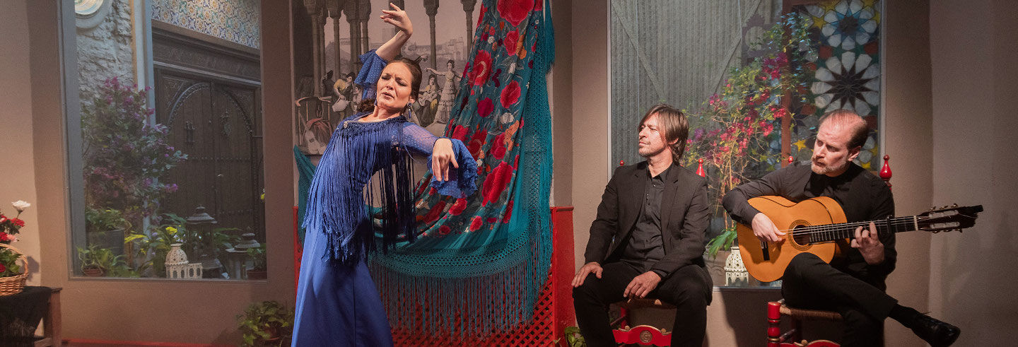 Flamenco Show at the Casa de la Memoria