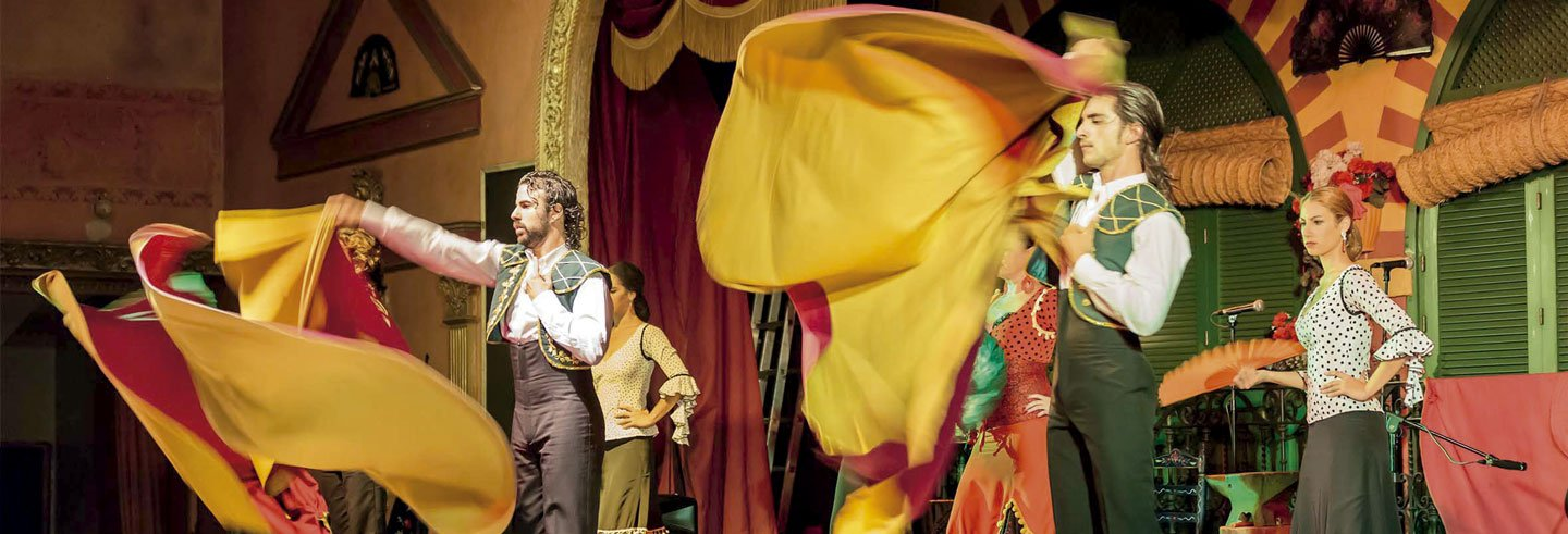 Spectacle de flamenco dans El Palacio Andaluz