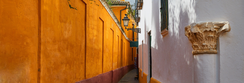 Free tour por el barrio de Santa Cruz
