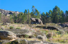 Tour por la Sierra de Gata