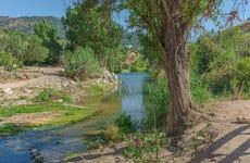 Tour en paddle surf por el río Guadiaro
