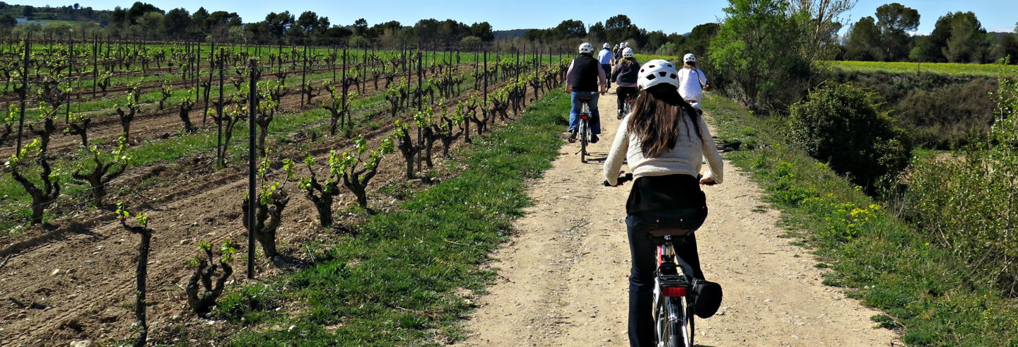 Penedes Vineyards Bike Tour