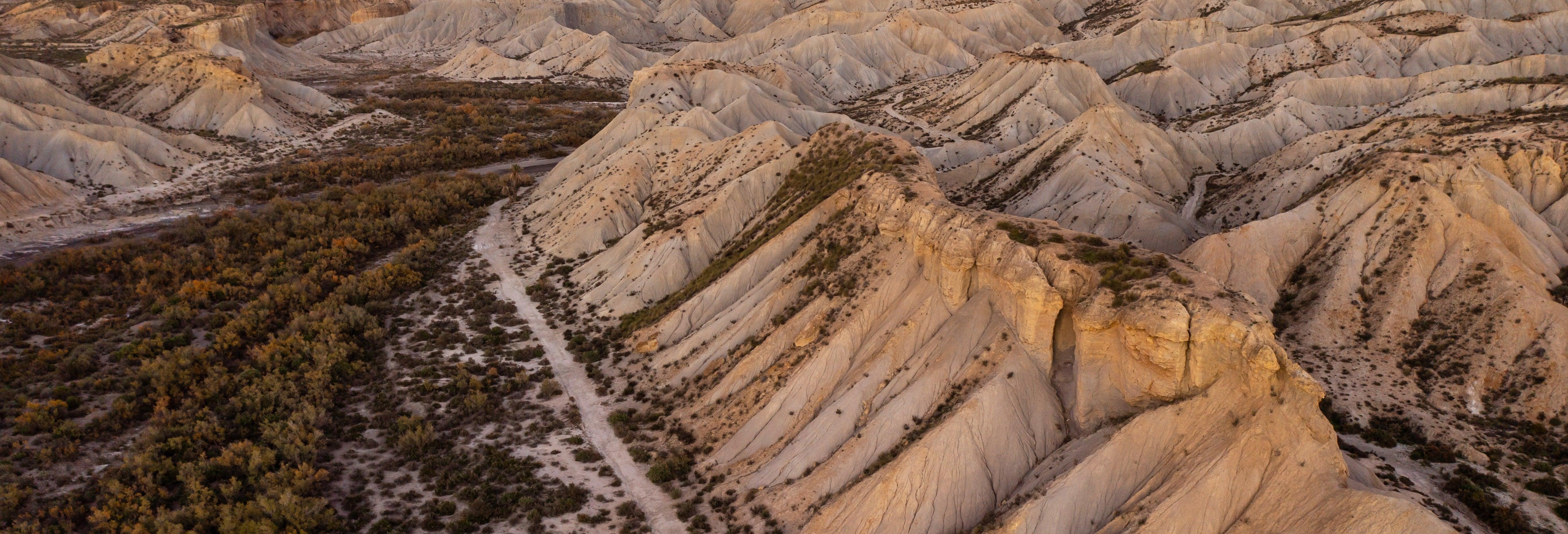Paseo a caballo por el desierto de Tabernas