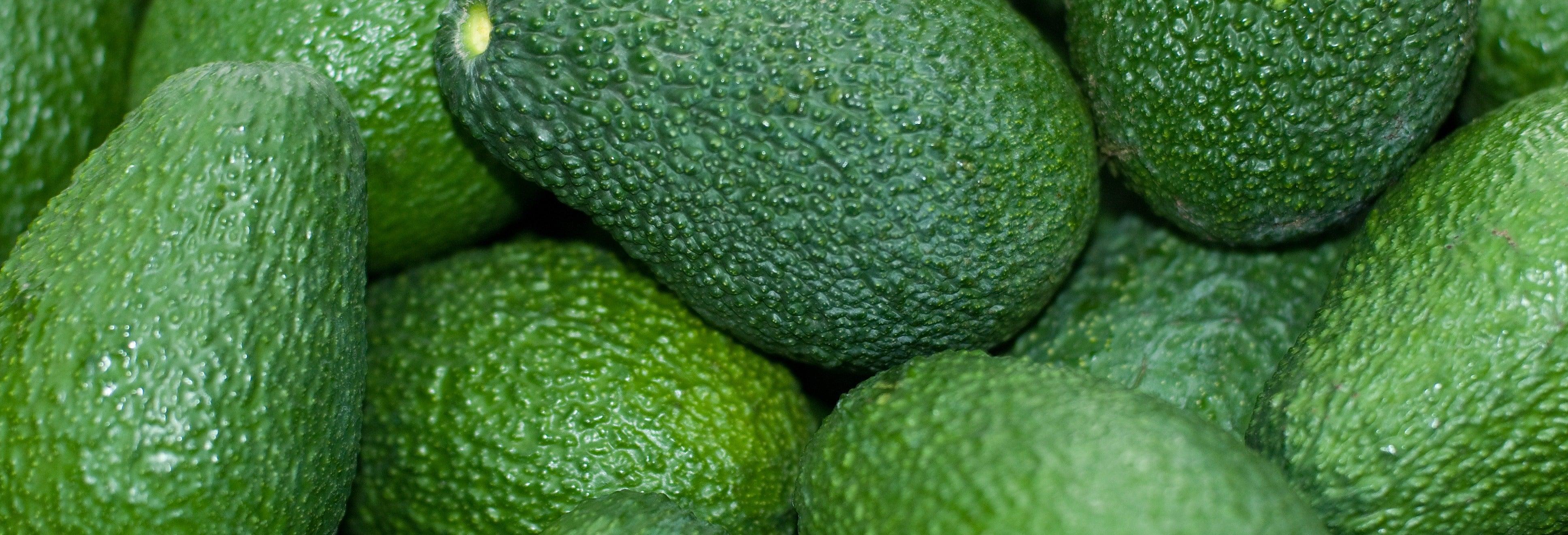 Vélez-Málaga Day Trip