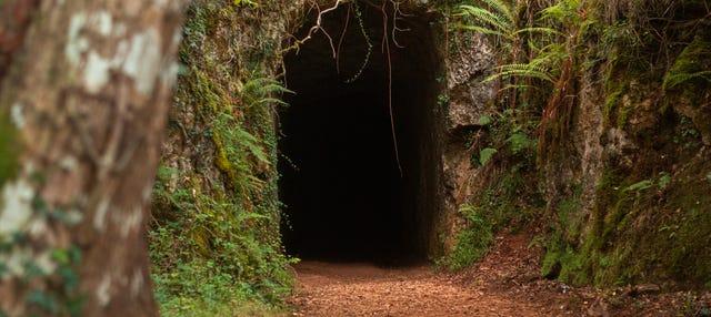 Excursión a las minas de Udias