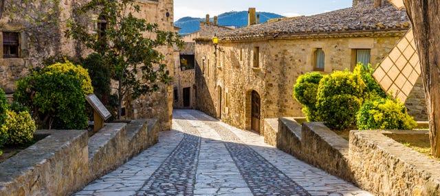 Excursión a Gerona + Degustación de vinos