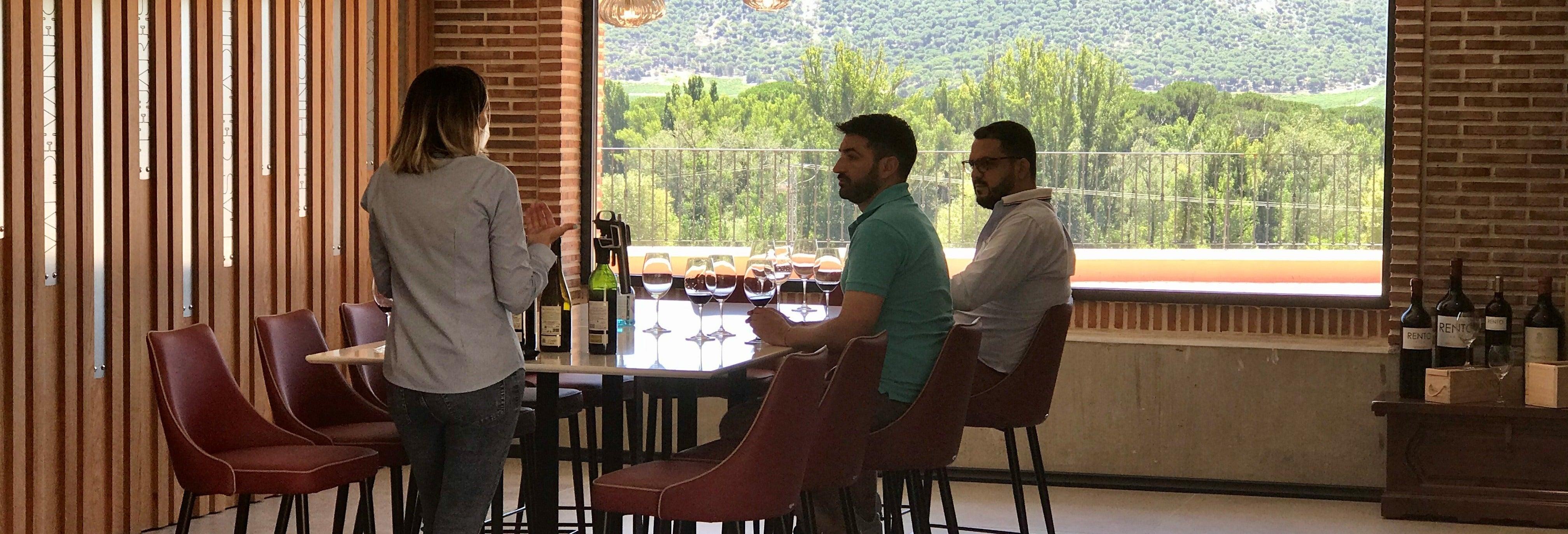 Cata de vino, queso y aceite en la Bodega Matarromera