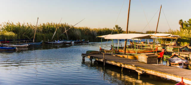 Excursión en 4x4 por la Albufera + Paseo en barca tradicional