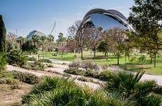 Tour en bicicleta por el Jardín del Turia