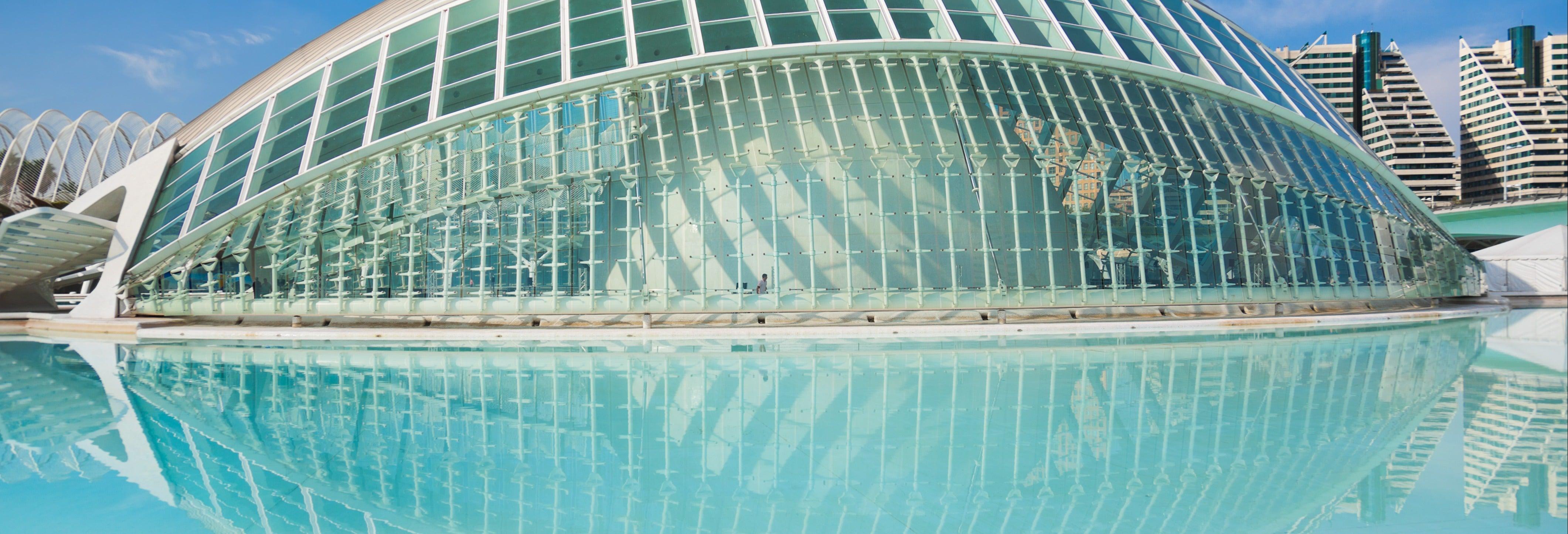 Visita guiada por la Ciudad de las Artes con entradas